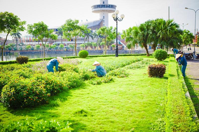 Nhận chăm sóc sân vườn, thảm cỏ vườn hoa…